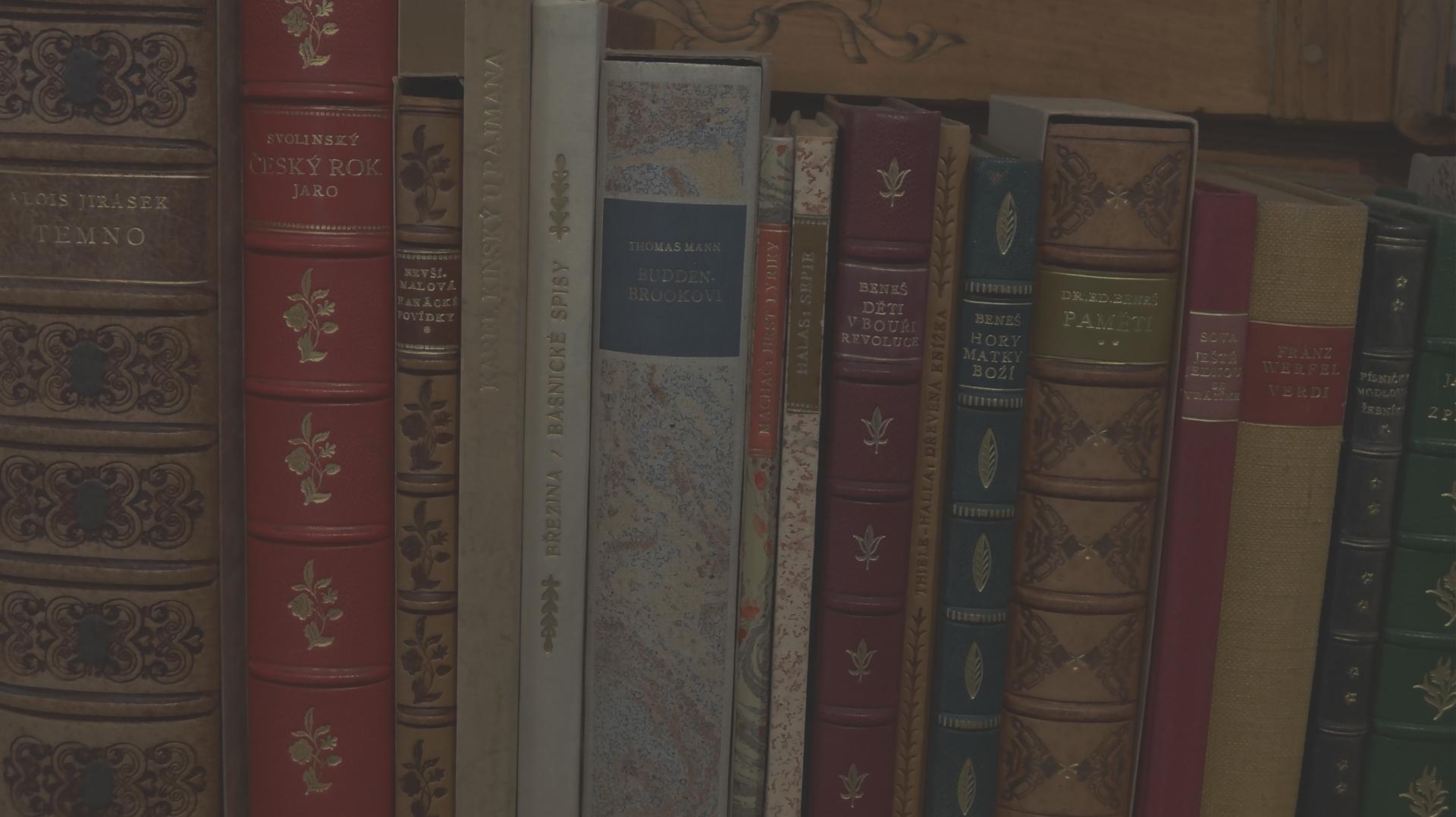 Umělecká knižní vazba - zdobené hřbety knih