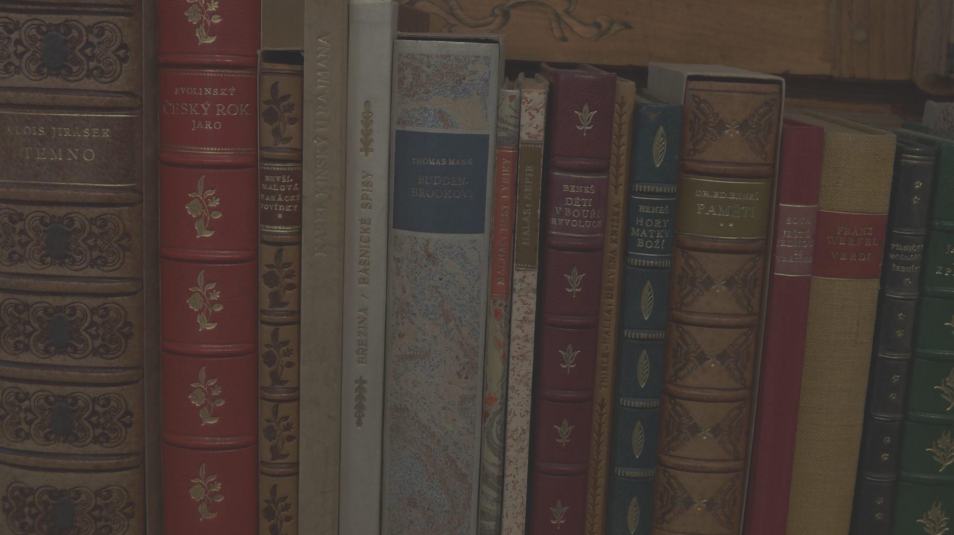 Zdobené knižní hřbety - umělecká knižní vazba
